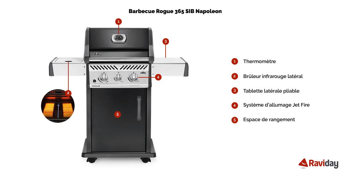 Rogue 365 SIB schéma