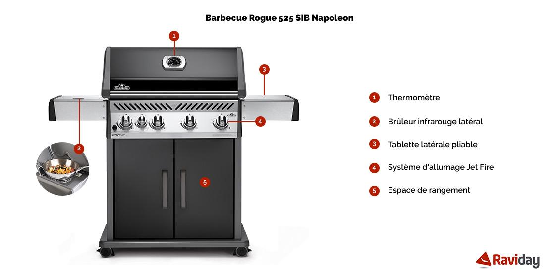 Rogue 525 SB schéma