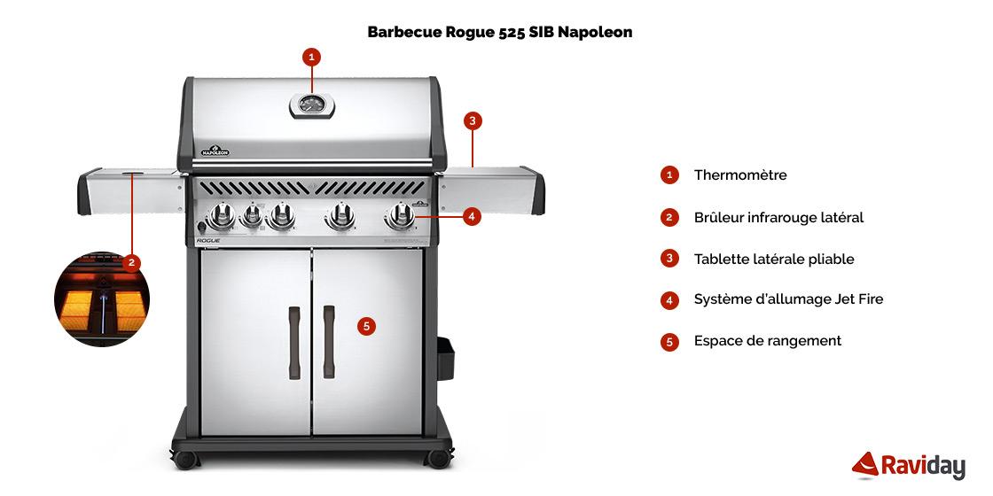Rogue 525 SIB schéma