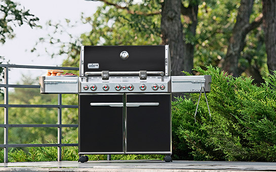 Barbecue à gaz Weber Summit E-670 GBS