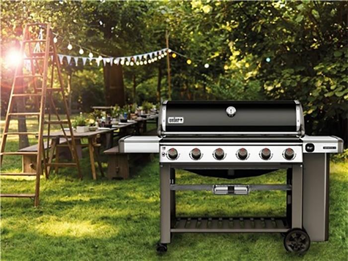 barbecue weber genesis ii e 610 gbs. Black Bedroom Furniture Sets. Home Design Ideas