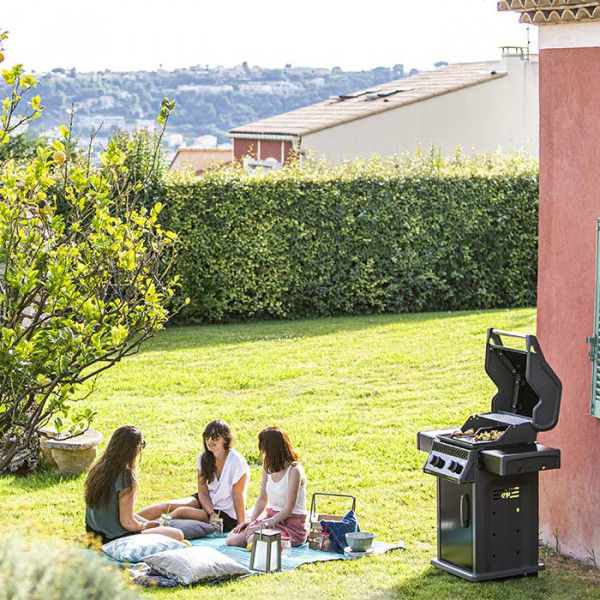 Barbecue à gaz Napoleon ROGUE 365 PK