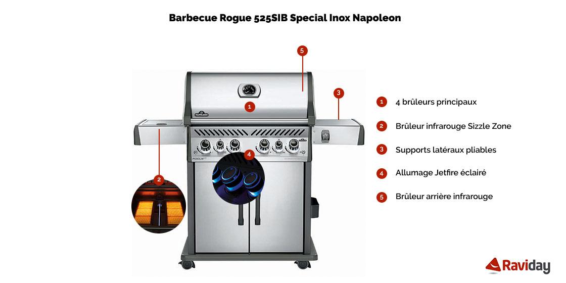 Rogue 525SE SIB schéma