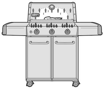 Cuisson directe sur Barbecue à Gaz Weber